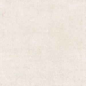 1885 Polirani granit 6008 60x60cm