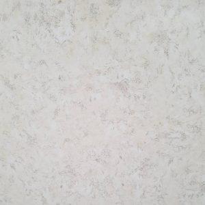 2288 Polirani granit 60x60 869202N1 ton D9-W1 Visoki sjaj