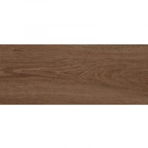 2445 Argenta Forest Natural Gres 22,5x60